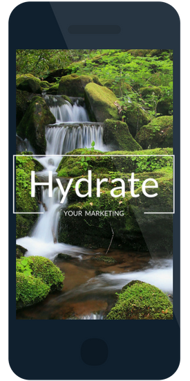 Insight Marketing - Mobile Web Design