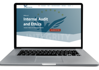 Audit and Ethics website
